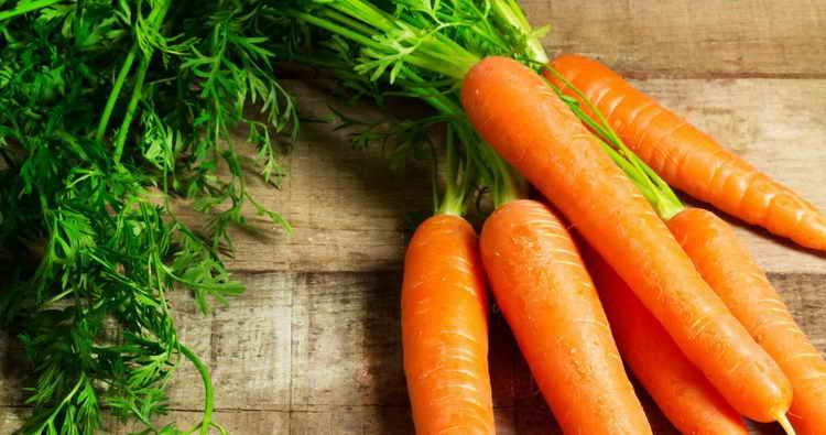 морковь отварная калорийность