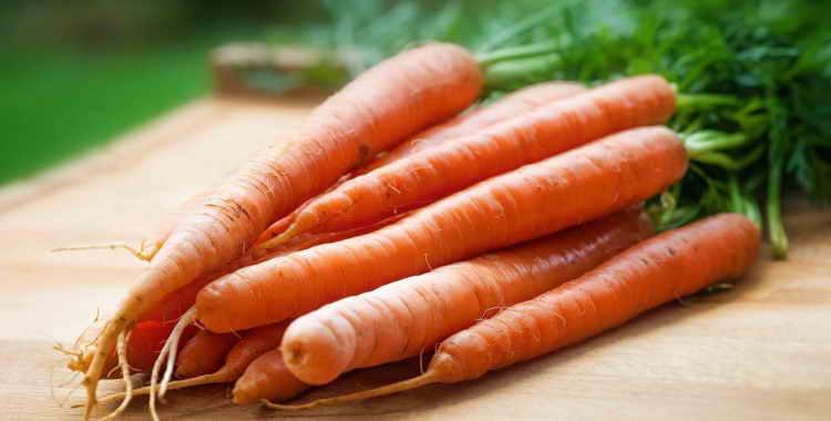Калорийность сырой моркови. Морковь отварная: калорийность