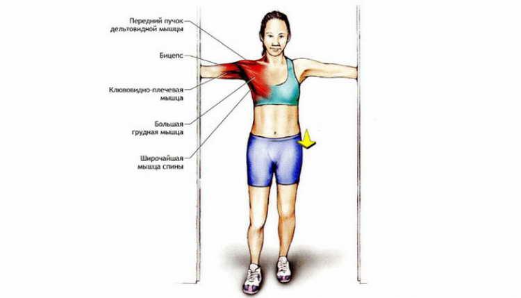 омплекс упражнений для похудения надому